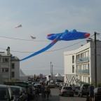 Berck-sur-Mer  2011