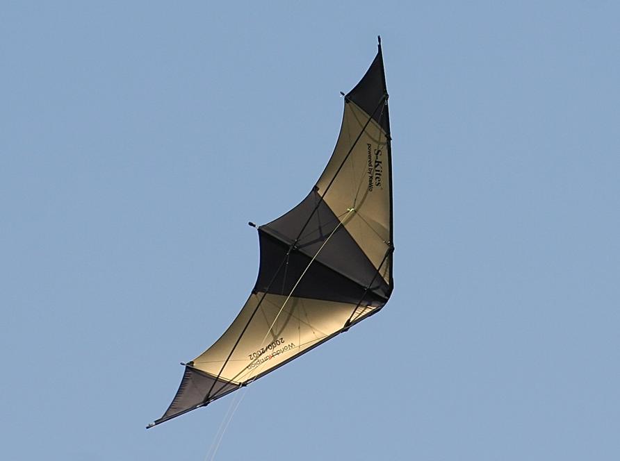 S-Kite 0.9 WM strong - Bild 2
