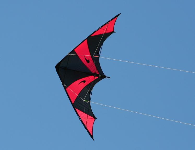 Devil Wing 2 von Spacekites