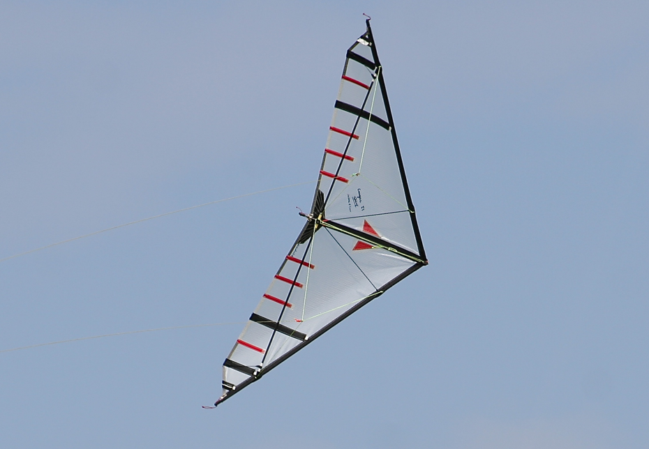 Cougar II Competition Mylar TS