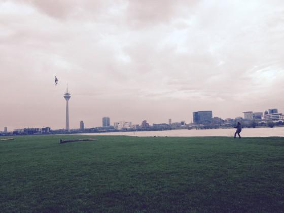 Rheinwiese Düsseldorf