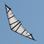 Tavor 190 CZ von Popeye Kites