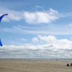 Blau, blau, blau blühen die Cooper Kites...