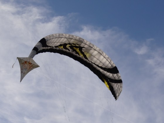 Selbstgebastelter Einleiner vor Hitech-Flysurfer - Lieblingsbild!